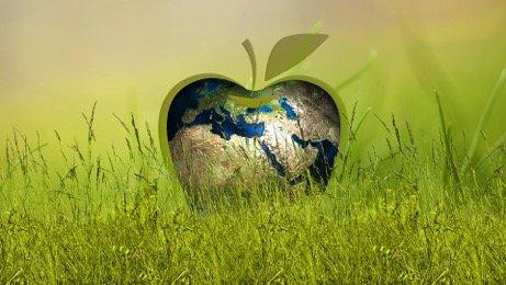 Il nostro impegno per la sostenibilità